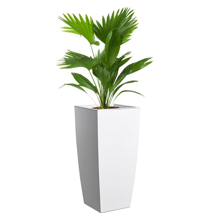 Übertopf Infinity mit Pflanze